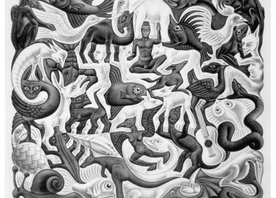 10. Studio di divisione regolare del piano con animali fantastici. Escher